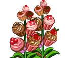 Cupcake Crop