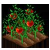 File:Plants.png