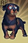 Rottweiler+