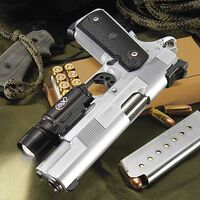 Silver pistol tan ammo box