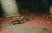 Infected Soldier Buckingham Bunker