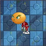 Citron Zombie