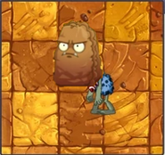 Primal Wall Nut Zombie