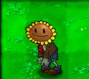 Sunflower zombie healer