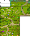 Village Full Map.png