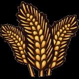 File:Grains.png
