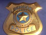 Zootopia Police badge