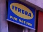 Itreea