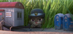 Judy hiding in grass