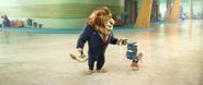 Please - Lionheart