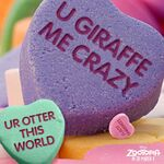 Zootopia Valentine heart candies promotional image