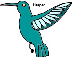 HarperTheHummingBird