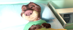 Otterton-wake-up