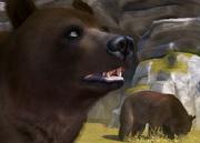Cinnamon-bear-ztuac