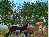 List of Official Animals in Zoo Tycoon