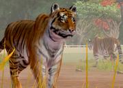 Bengal-tiger-ztuac