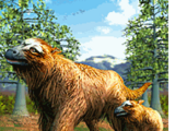 Giant Ground Sloth
