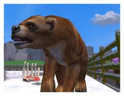 Short faced bear ae