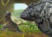 Perentie-lizard-ztuac
