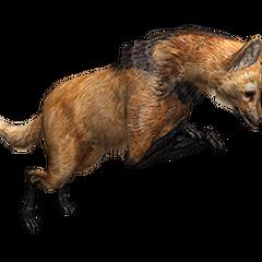 Maned Wolf from Cerrado Treasure.