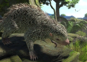Andean-porcupine-ztuac