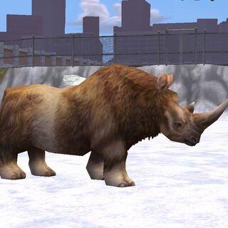 A woolly rhinoceros.