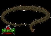 Giant anaconda paranoia by budhiindra-d63aaz2