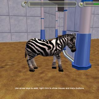 An official Zebra variant.