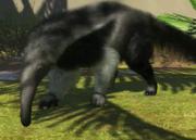 Giant-anteater-ztuac