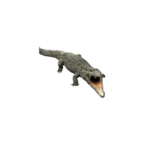 The Radical Remake version of the Nile Crocodile.