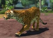 Mexican-jaguar-ztuac