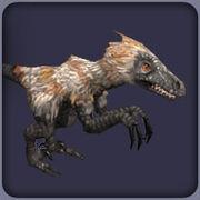 Velociraptor2