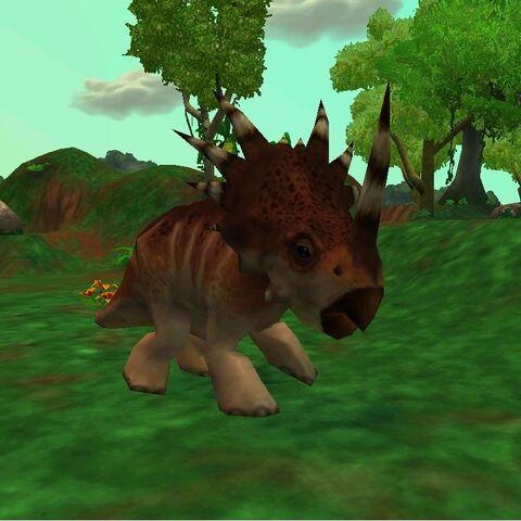 Male <i>Styracosaurus</i> (Extinct Animals)