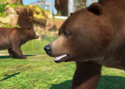 Gobi-bear-ztuac