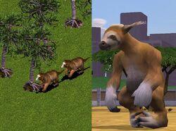 Sloth 1 2