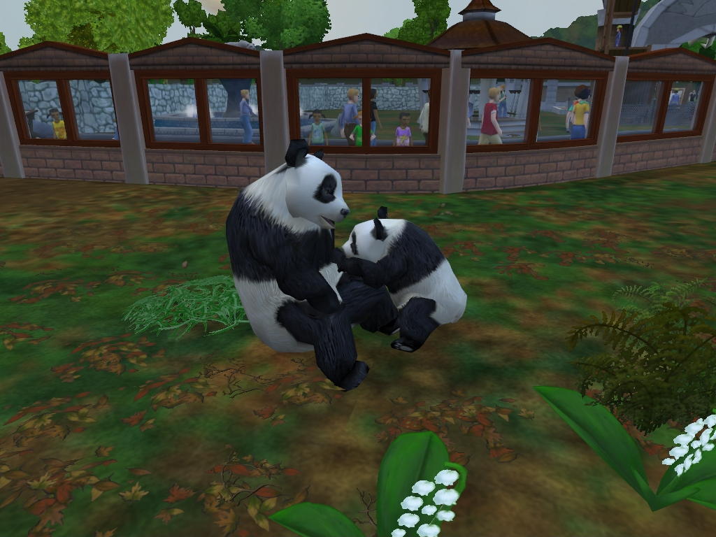Zoo Tycoon 2 Download White Lion