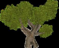 TreeHollow HENDRIX