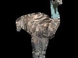 Emu (Colonel Swampert)