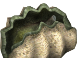 Giant Clam (HENDRIX)