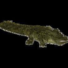 Purussaurus Bunyupy Zt2 Download Library Wiki Fandom