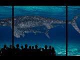 Hell's Aquarium (Tyranachu)