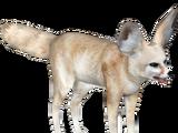 Fennec Fox (ZTSF Designs)