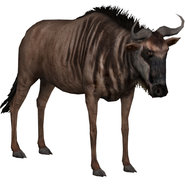 Blue Wildebeest Slice Zt2 Download Library Wiki