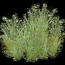 Sagebrush (The Restorers)