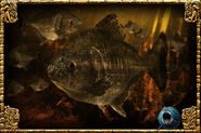 Redeye Piranha (Zerosvalmont)