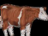 Live Food Cow (BioHazard)