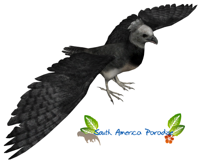 Harpy Eagle (Titan) | ZT2 Download Library Wiki | FANDOM powered by ...