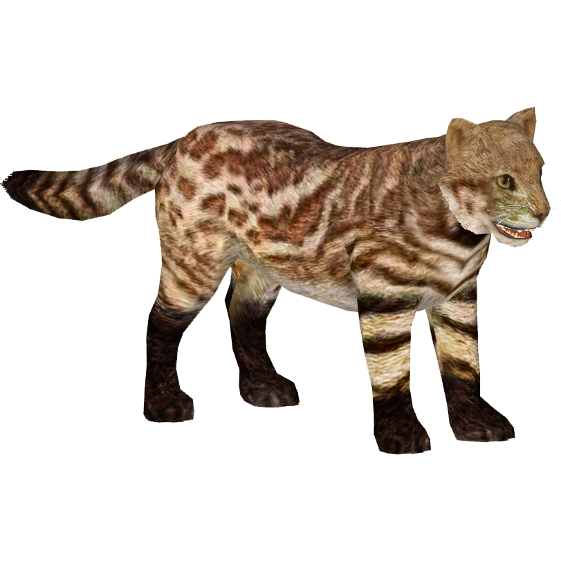 Pantanal Cat Tamara Henson Zt2 Download Library Wiki