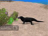Reptile and Amphibian Pack (Terrena Laxamentum)