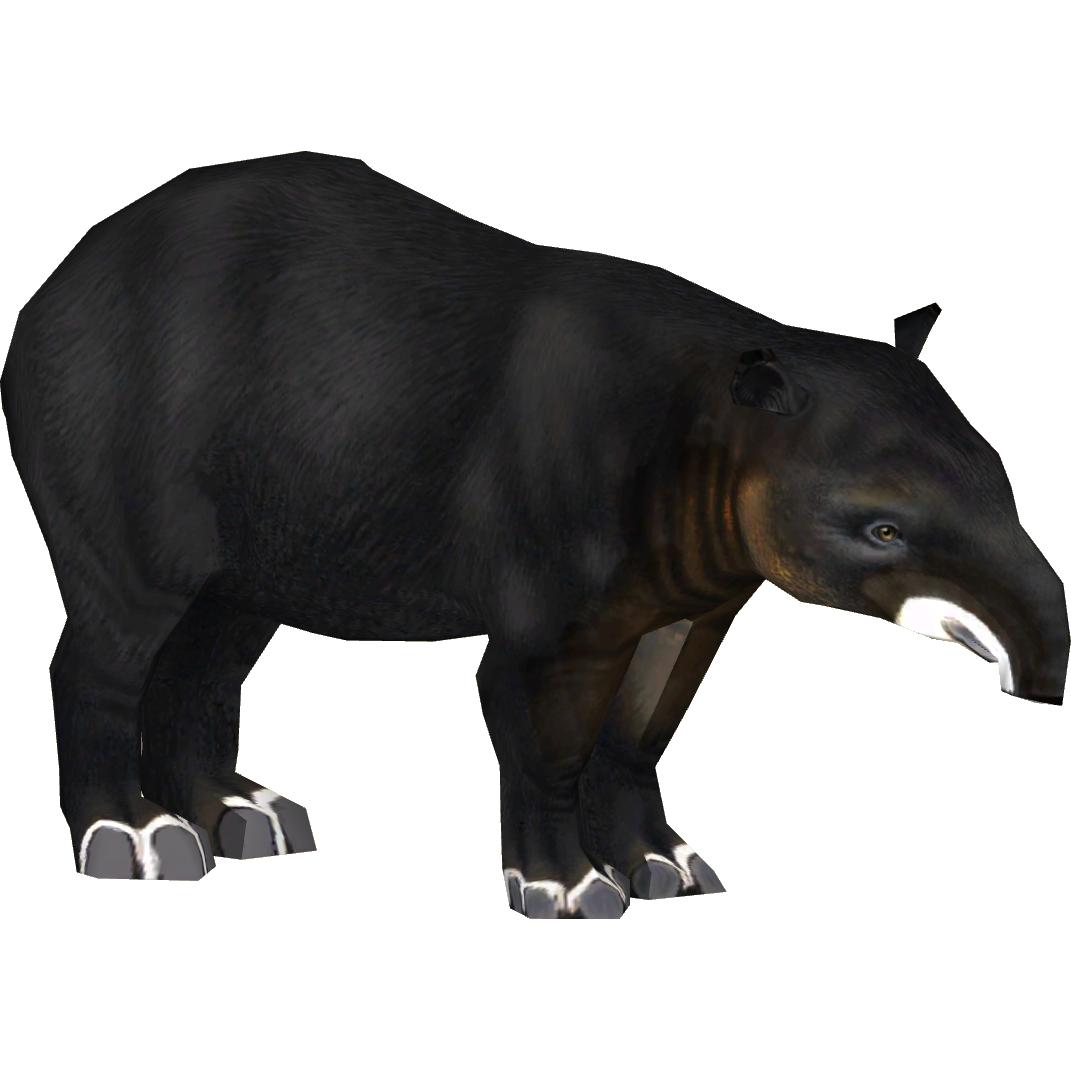 Mountain Tapir (Acapella) | ZT2 Download Library Wiki | FANDOM